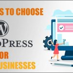 wordpress-for-small-businesses